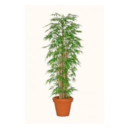 Kunstplant Bamboe 210 cm hoog